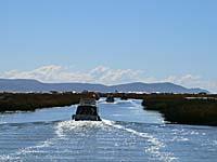 ボートに乗ってチチカカ湖をゆく