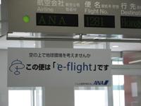 e-flightって??