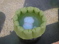 ペパーミント足湯