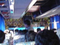 ファンシーバス