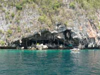 ピピ・レ島 ツバメの巣