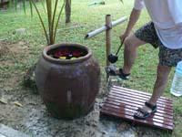 ハイビスカス入りの水壺