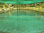 ほとんどプールのような温泉