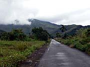 布農部落周辺の景色。