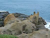 和平島公園の海岸のナメクジみたいな岩