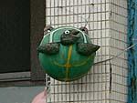 フロートで作った亀