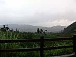 白木屋渡假休閒民宿の外の景色