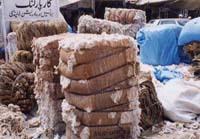 綿が道ばたに山積み