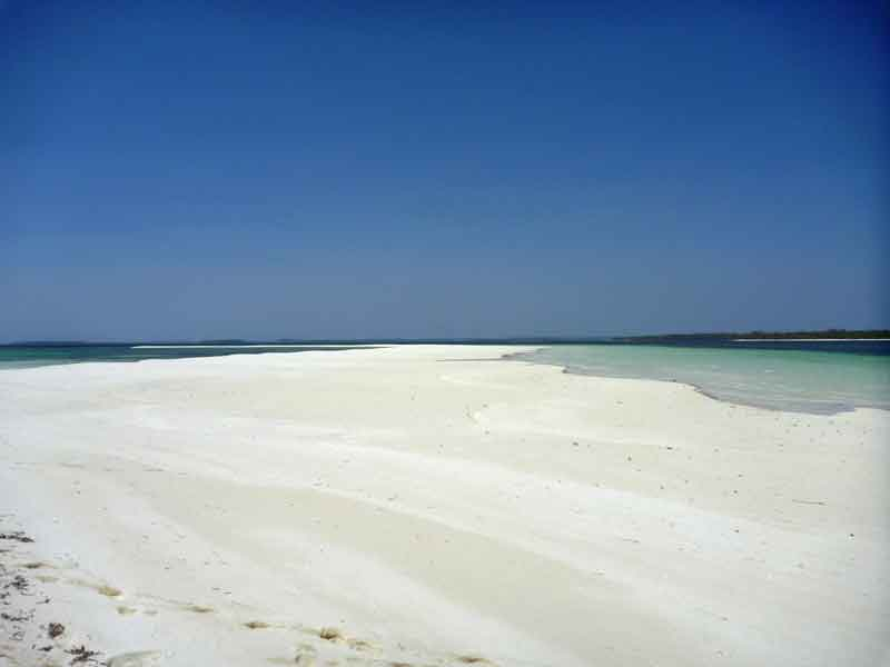 真っ白で美しいスネークアイランドにペリカンの群れ。