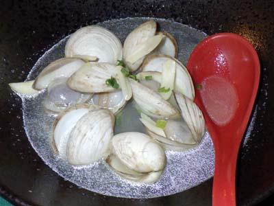 マングローブ貝