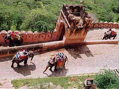 インド・パキスタン(フンザ)個人旅行 2001年7月~8月