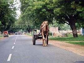 デリーで観光タクシーチャーター。ドライバーは相変わらずいい加減。