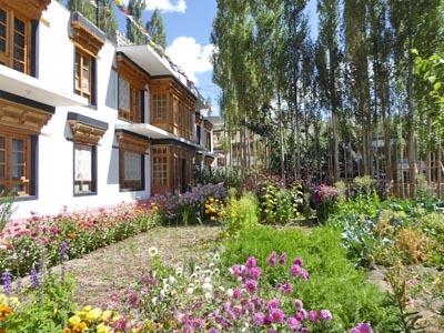 ジグギャスゲストハウスの庭と宿泊棟