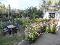 ゲストハウスの庭