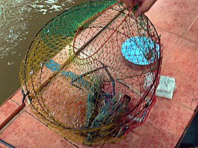 バンコク市内で遊ぶ:手長エビの釣り堀で釣りとエビ料理堪能。